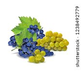 fresh  nutritious  tasty grapes.... | Shutterstock .eps vector #1238492779