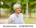 old age  retirement and people...   Shutterstock . vector #1238589550