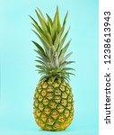 pineapple isolated on blue... | Shutterstock . vector #1238613943