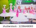 andong   south korea   oct 01   ... | Shutterstock . vector #1238648083