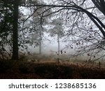 foggy english countryside... | Shutterstock . vector #1238685136