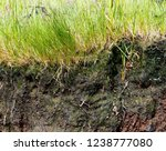 close view of the erosion of a...   Shutterstock . vector #1238777080