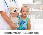 Taking my doggy to the veterinary - child with her pet - stock photo