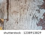 rusty wall. blue and white wall.... | Shutterstock . vector #1238913829
