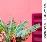 plants on pink fashion concept. ... | Shutterstock . vector #1238994526