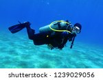 Small photo of Scuba diver swimming in the shallow blue sea with sandy seabed. Diver exploring the blue water. Underwater photography, portrait of the scuba diver.