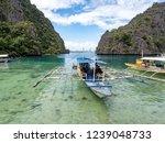 coron  philippines   november ... | Shutterstock . vector #1239048733