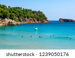 alonissos  greece   august 28 ... | Shutterstock . vector #1239050176