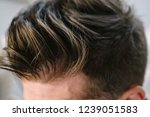 stylish men's hairstyle close... | Shutterstock . vector #1239051583