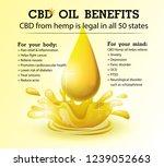 cbd oil benefits medical uses... | Shutterstock .eps vector #1239052663