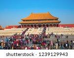 beijing  china   october 14 ... | Shutterstock . vector #1239129943