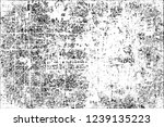 grunge black and white | Shutterstock . vector #1239135223
