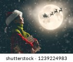 merry christmas  cute little... | Shutterstock . vector #1239224983
