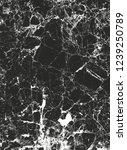 distressed overlay texture of... | Shutterstock .eps vector #1239250789