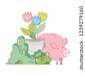 pig animal farm with garden and ... | Shutterstock .eps vector #1239279160