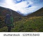 men walking alone in a green... | Shutterstock . vector #1239315643
