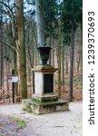 czech republic  marianske lazne ... | Shutterstock . vector #1239370693