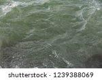 lake water texture | Shutterstock . vector #1239388069