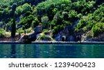 old world war 2 submarine pen... | Shutterstock . vector #1239400423