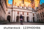 a young woman  tourist in a hat ... | Shutterstock . vector #1239400486
