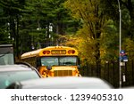 A School Bus On The Streets Of...