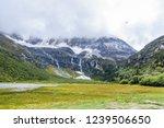 scene in daocheng yading... | Shutterstock . vector #1239506650