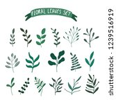 collection of floral leaves... | Shutterstock .eps vector #1239516919