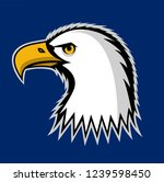 bald eagle symbol of north... | Shutterstock . vector #1239598450