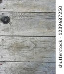 natural gray wood. door  wall  ... | Shutterstock . vector #1239687250