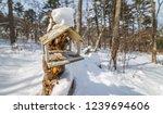 bird feeder in the winter... | Shutterstock . vector #1239694606