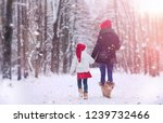 winter fairy tale in the forest ...   Shutterstock . vector #1239732466