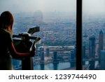 dubai  united arab emirates ... | Shutterstock . vector #1239744490