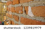 exterior of unfinished...   Shutterstock . vector #1239819979