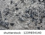 close up photo of charcoals and ... | Shutterstock . vector #1239854140