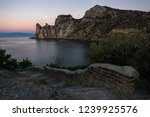 prince golitsyn's trail at cape ... | Shutterstock . vector #1239925576