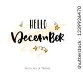 hello december. hand written... | Shutterstock .eps vector #1239926470