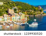 beautiful sea coast with... | Shutterstock . vector #1239930520