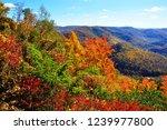 point mountain overlook ... | Shutterstock . vector #1239977800