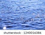 sunshine in the sea | Shutterstock . vector #1240016386