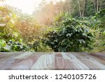 wooden tabletop on blurred... | Shutterstock . vector #1240105726
