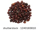 rosehip dry fruit isolated on a ... | Shutterstock . vector #1240183810