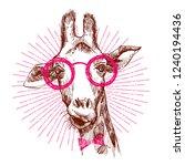 a hipster stylish giraffe. hand ...   Shutterstock .eps vector #1240194436