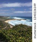pointes des colibris  ... | Shutterstock . vector #1240226149