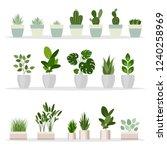 set of decorative houseplants.... | Shutterstock .eps vector #1240258969