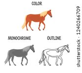 horse breed in color ...   Shutterstock .eps vector #1240266709