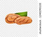 walnut icon. cartoon of walnut... | Shutterstock .eps vector #1240290133
