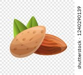 almonds icon. cartoon of... | Shutterstock .eps vector #1240290139