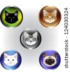 Set Of Five Vector Kitten Faces