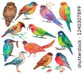 set of various birds watercolor ... | Shutterstock . vector #1240307899