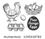 vector illustration of a free... | Shutterstock .eps vector #1240318783